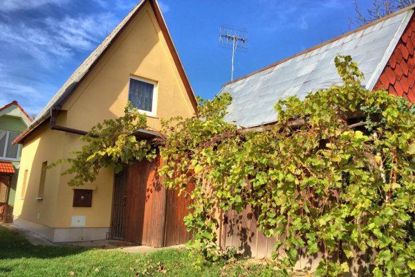 Viničný domček na predaj s vinohradom, Vráble – Kňažská Hora